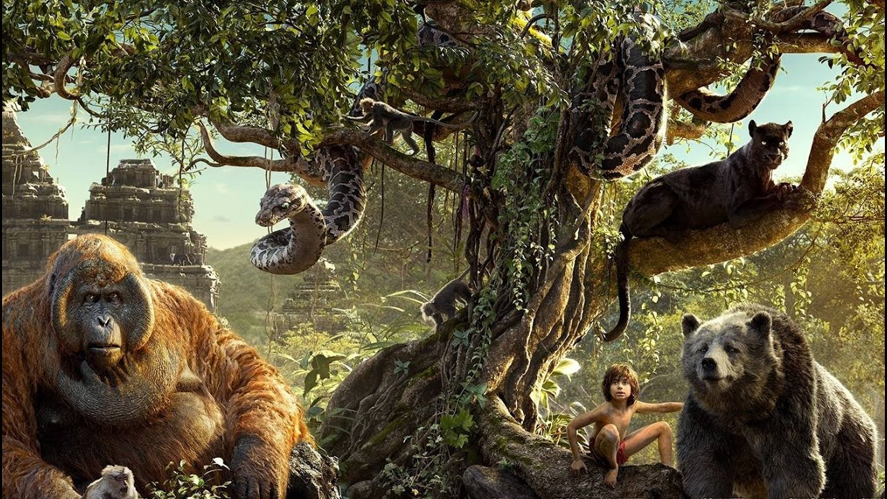 English Movie Night | the Jungle Book