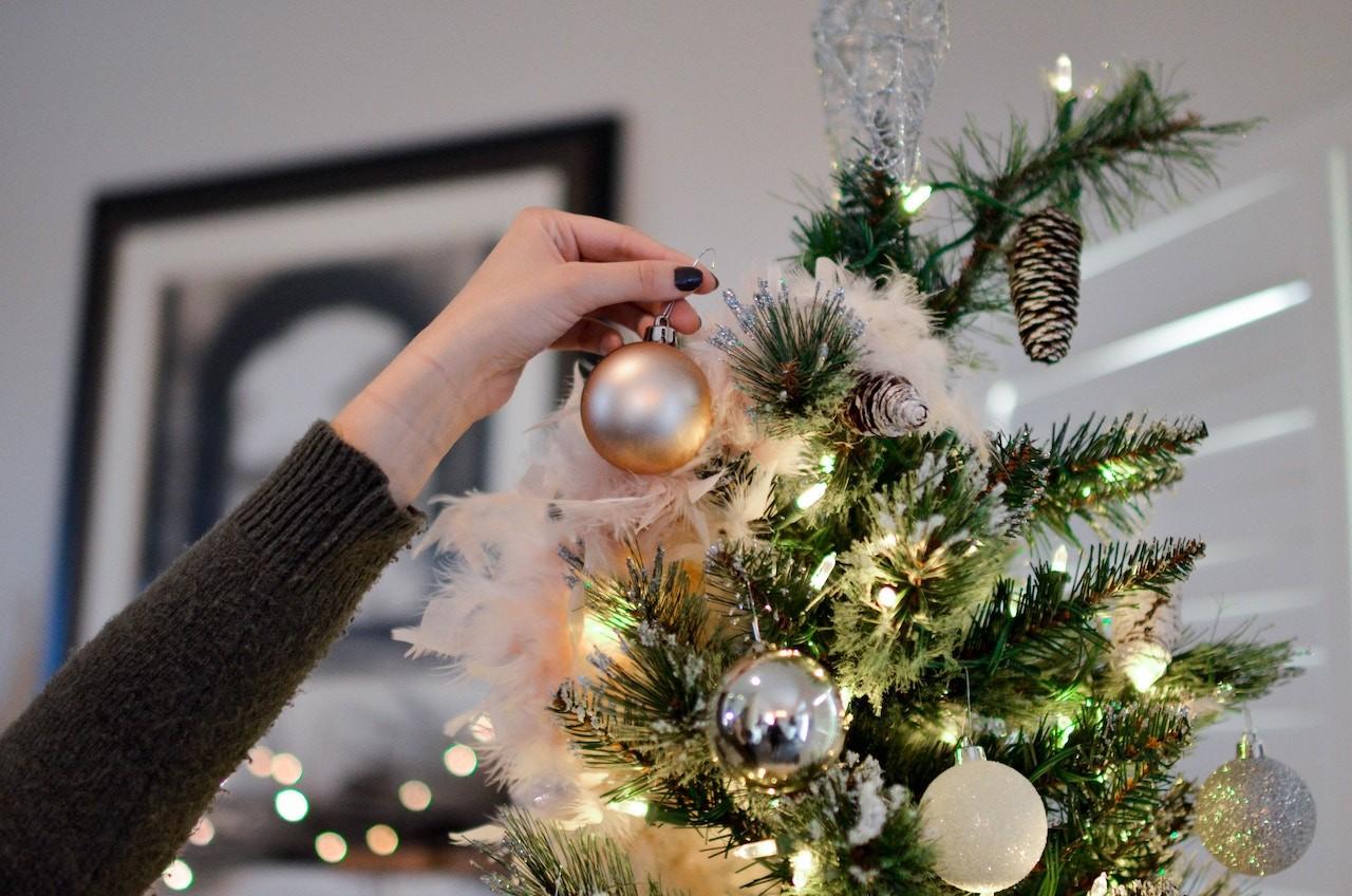 Як вибрати та де купити різдвяну ялинку у Маріуполі?
